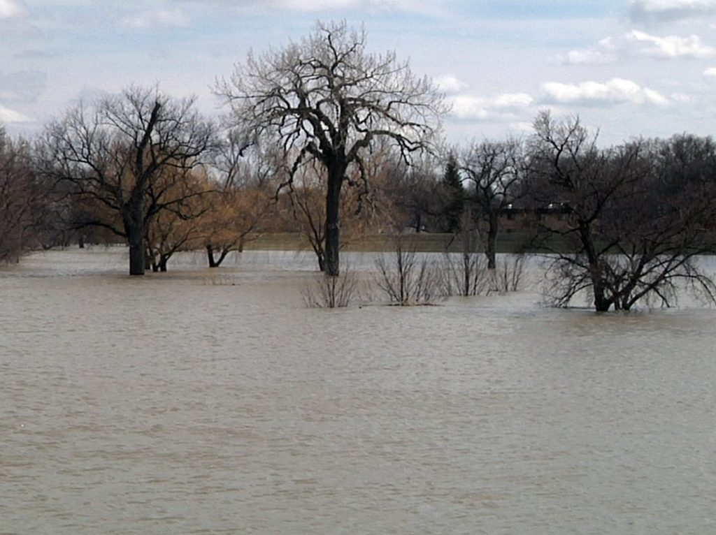Only the Diversion Project Will Counter Higher Flood Insurance Premiums