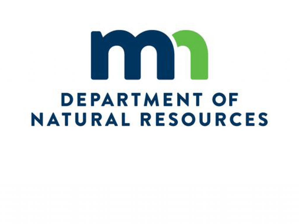 DNR Supplemental EIS