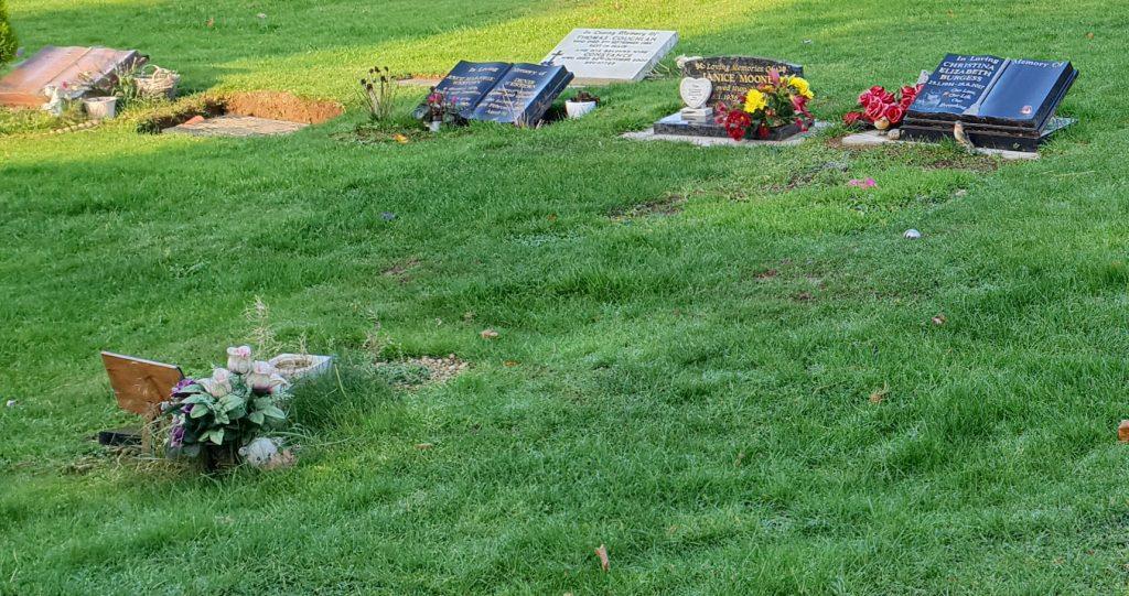 Cemetery Mitigation